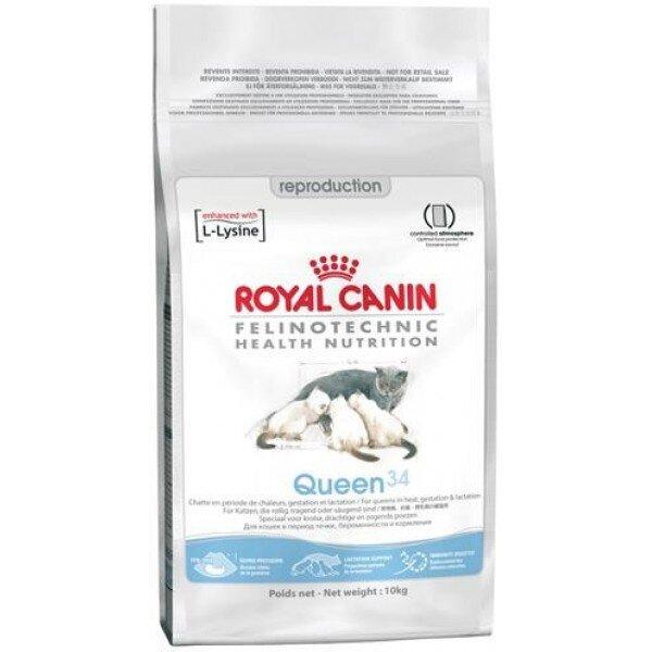 Как кормить котенка корм royal canin