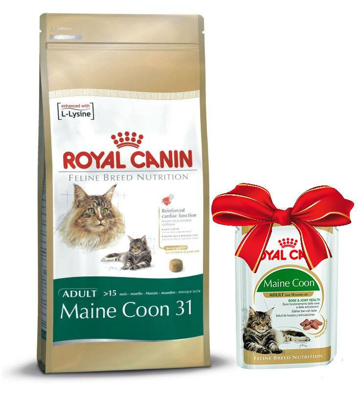 Корм royal canin для кошки британский